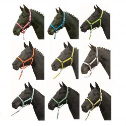 2785 HKM Stars Softice Padded Headcollar - ALL COLOURS