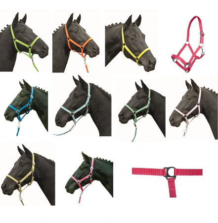 2786 HKM Stars Classic Softice Headcollar ALL COLOURS
