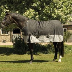On Clearance Price with FREE POST UK ; Rhinegold Aspen Heavyweight 350g Turnout Rug with Standard Neck;