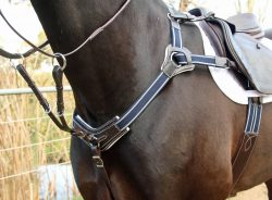 Martingales / Breastplates