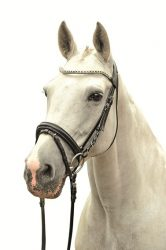Nosebands & Browbands