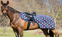 Horse Exercise Sheet Rugs