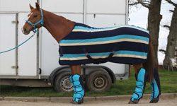 Equestrian Show Wear & Travel Wear