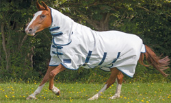 Horse Fly Rugs and Masks