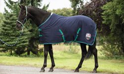 Value Range Horse Rugs