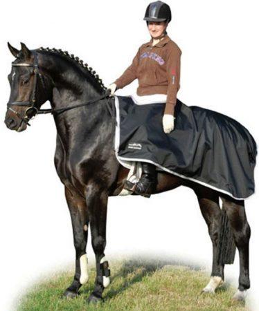 7810 Waterproof Exercise Sheet Black