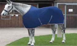 Shires Equestrian Horse Rugs