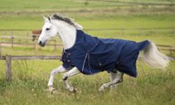 HKM Horse Clothing