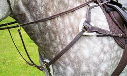 Shires Horse Tack