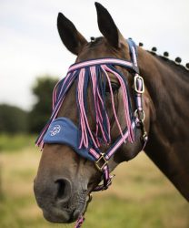 8283 A quality headcollar from Lauria Garrelli's 'Queens' range at HKM. Featuring a neoprene lined and also adjustable noseband and headpiece.