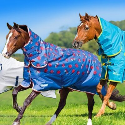 Value Equestrian Rugs