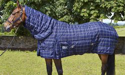 Value Equestrian Stable Rugs