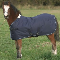 TOD881876 MARK TODD FOAL 150G LIGHT TO MEDIUMWEIGHT TURNOUT RUG