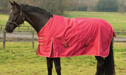 Value Equestrian Lightweight Turnout Rugs