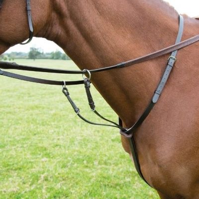 Shires Rossano Running Martingale