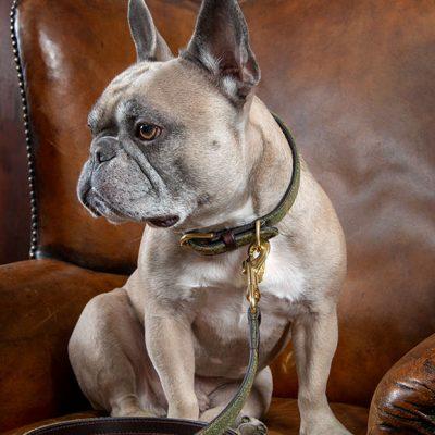 Shires Digby & Fox Tweed Dog Lead