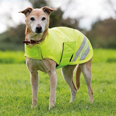 Shires EQUIFLECTOR Dog Coat