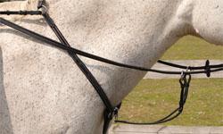 Value Equestrian Martingales & Breastplates