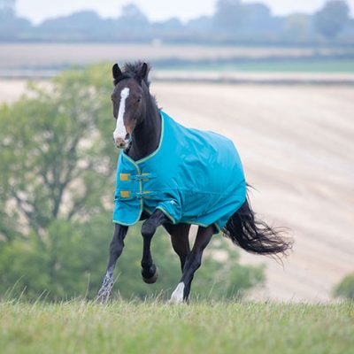 Shires Tempest Original 300g Heavyweight Turnout Rug