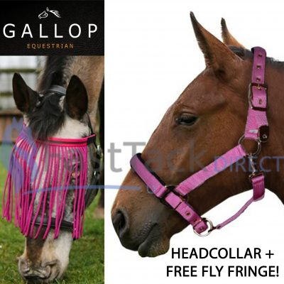 Gallop Heavy Duty Padded Headcollar with Free Fly Fringe