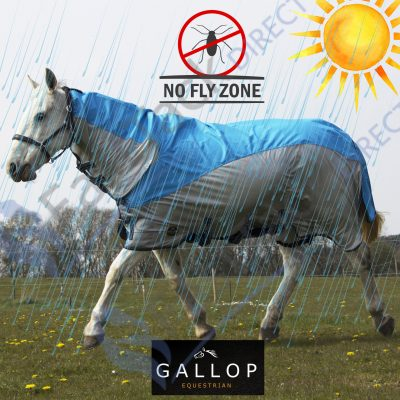 Gallop Limited Edition Turnout Fly Rug