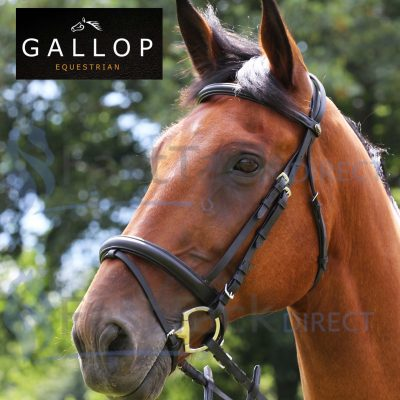 Gallop Comfort Bridle + Rubber Reins