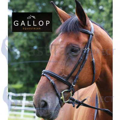 Gallop Padded Bridle + Rubber Reins