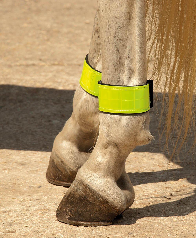 Harlequin Neoprene Hi Vis Reflective LEG Straps 30cm