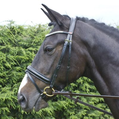Whitaker Barton Bling Flash Bridle