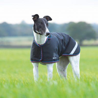 Shires Digby & Fox Waterproof Greyhound Coat